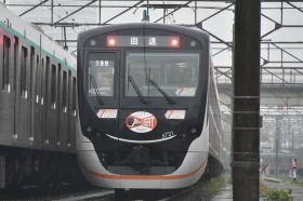 20181109_nagatuta_1.jpg