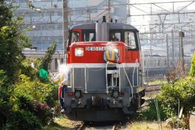 20071115_zi_zu_1.jpg